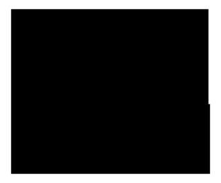 IGPLogo_Full_Black_RGB